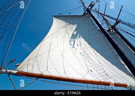 Tall ship sail - Stock Photo