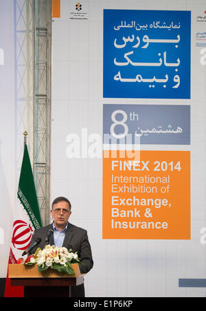 June 8, 2014 - Tehran, Iran - VALIOLLAH SEIF, Governor of Central Bank of Iran, speaks during the opening ceremony - Stock Photo