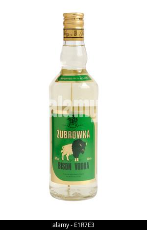 Bottle of Polish Zubrowka Bison Vodka - Stock Photo