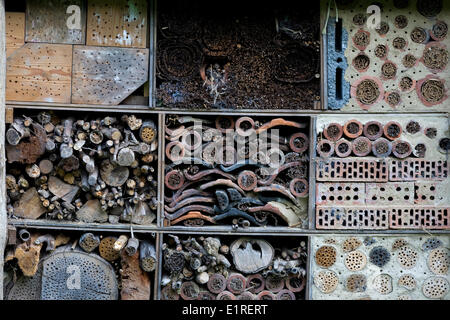 Nesting place for solitary bees - Stock Photo