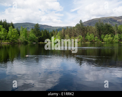 Lord Strathcona created Glencoe Lochan and woodland for Canadian wife Isabella who was North American descent to - Stock Photo