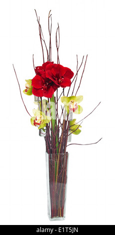 Floristic composition with red Hippeastrum and Cymbidium Orchid flowers - Stock Photo