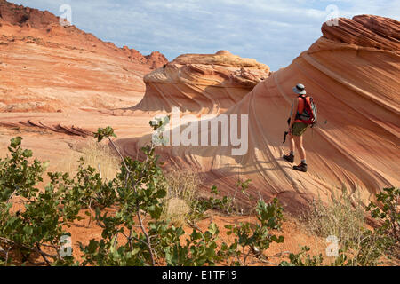 Hiker in the Wave, North Coyote Buttes, Paria Canyon-Vermilion Cliffs Wilderness Area, Utah, United States of America - Stock Photo