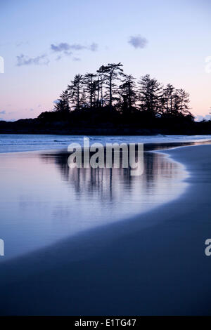 Tree reflections on Chesterman's Beach Frank's Island near Tofino British Columbia Canada on Vancouver Island in - Stock Photo