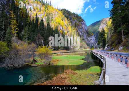 View a valley with freshwater stream highway a walking path in autumn in JiuZhaiGou National Park in Sichuan Province - Stock Photo