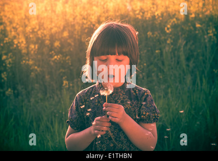 Little girl blowing out dandelion in a meadow - Stock Photo