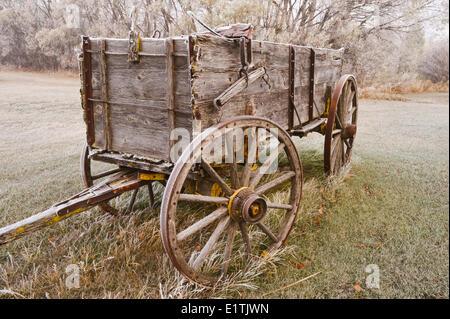 old wagon,frost covered trees, near Oakbank, Manitoba, Canada - Stock Photo