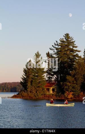 Couple Paddle Canoe On Source Lake Algonquin Park