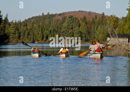 Family Canoeing On Source Lake Algonquin Park Ontario