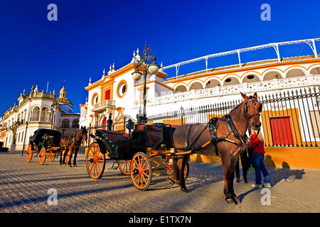 Horse drawn carriages outside the Plaza de Toros de la Maestranza (also La Real Maestranza - Bullring) in the El - Stock Photo
