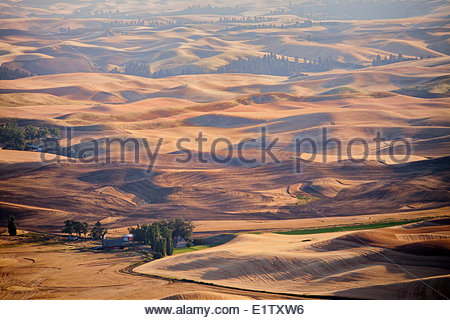 Fields in late summer in the Palouse region of eastern Washington State, USA. - Stock Photo