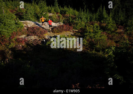 Two people trail running on Hollyburn Mountain, Cypress Bowl, West Vancouver. British Columbia. Canada