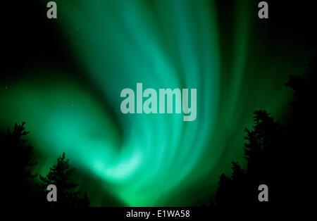 Northern lights or aurora borealis, Wood Buffalo National Park, Northwest Territories, Canada - Stock Photo