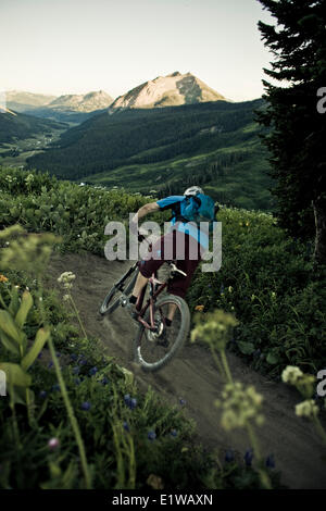 A male mountain biker rides the 401 Trail, Crested Butte, CO - Stock Photo