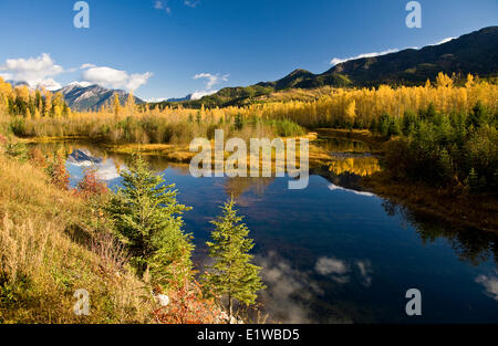 Unnamed pond in Elk Valley in autumn, Fernie, BC, Canada. - Stock Photo