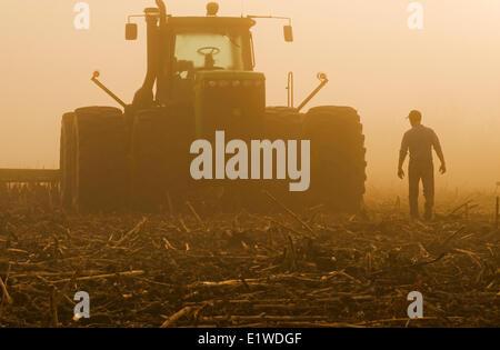 a farmer walks toward a tractor pulling cultivating equipment in a sunflower stubble field, near Lorette, Manitoba, - Stock Photo