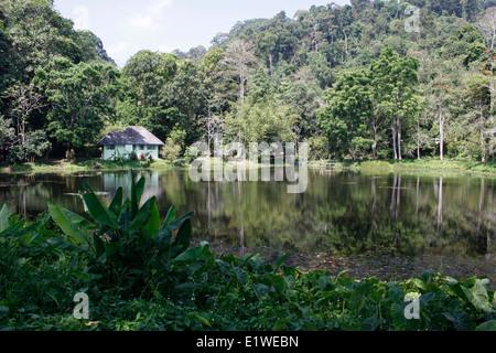 Khao Phra Thaeo National Park in Phuket Stock Photo ...