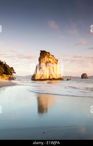 Te Hoho Rock  a sea stack in Cathedral Cove at the Te Whanganui-A-Hei Marine Reserve, New Zealand - Stock Photo