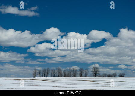 Early spring snow covered field in Severn Township, Simcoe County, Ontario, Canada - Stock Photo