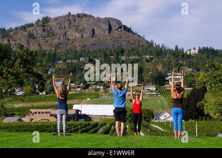 Yoga in the vineyard, Mt Boucherie Estate Winery, West Kelowna, British Columbia, Canada. MR 017, MR 018, MR 019, - Stock Photo