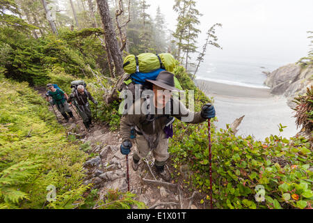 Hikers near Km 32 on the West Coast Trail negotiate a section trail with a particularly steep drop.  West Coast - Stock Photo
