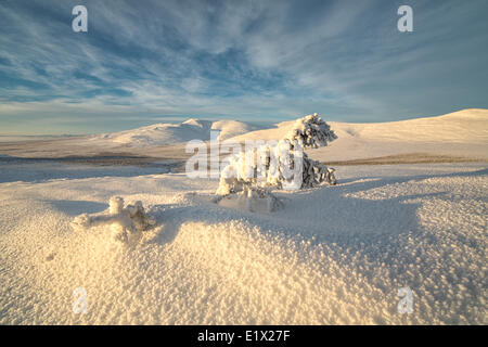 Late afternoon sun shines on the snow covered tundra on the mountaiins around Old Crow, Yukon. - Stock Photo