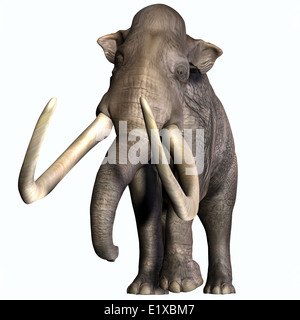The Columbian Mammoth lived during the Quaternary Period of North and Middle America. - Stock Photo