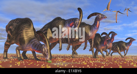 A flock of Pteranodon longiceps fly over a herd of Parasaurolophus dinosaurs as they look for better vegetation - Stock Photo