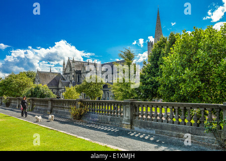 Ireland, Dublin, the St Patrik's gardens and cathedral - Stock Photo