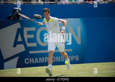London, UK. 11th June, 2014.  Andy Murray [GBR] in action against Paul-Henri Mathieu [FRA] during day three of The - Stock Photo