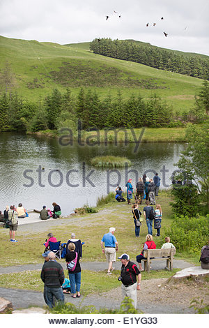 Ponterwyd, mid Wales, UK. 11th June 2014.   Visitors make the most of the bright warm weather on a visit to Bwlch - Stock Photo