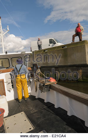 Action aboard a small Fishing vessel leaving the port of Amble in Northumberland. - Stock Photo
