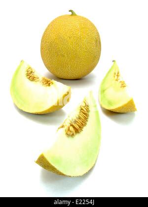 galia melon (cucumis melo)