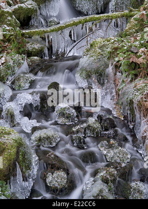 Small seasonal feeder stream with ice. Columbia River Gorge National Scenic Area, Oregon - Stock Photo