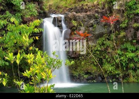 Waterfalls at Pua'A'Kaa state wayside. Maui, Hawaii. - Stock Photo