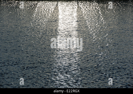 Sun Reflecting off Glasshouse onto the lake at RHS Wisley gardens. Surrey, England - Stock Photo