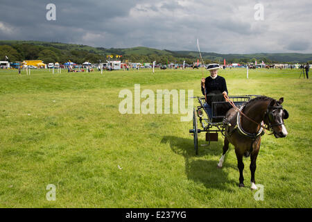 Aberystwyth, Wales, UK. 14th June 2014.   A very hot afternoon and glorious sunshine greeted a big turnout of entrants - Stock Photo