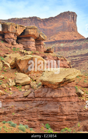 View from along the White Rim Trail in Canyonlands National Park near Moab, Utah - Stock Photo