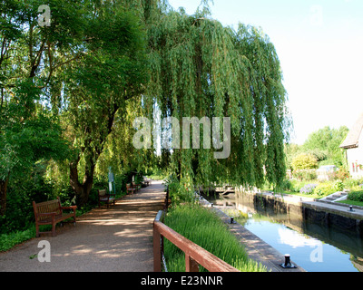 Public benches along the towpath at Iffley Lock, River Thames, Oxford, UK - Stock Photo