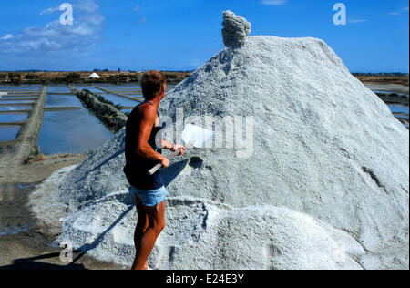 Salt marshes of Guerande. Stock Photo