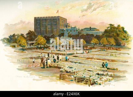 Norwich Castle, Norwich, England, in the 19th century, with the cattle market in front. After a work by Charles - Stock Photo