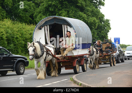Travellers in bow top horse drawn caravan travelling along busy road in West Midlands Uk / travellers wagon gypsy - Stock Photo