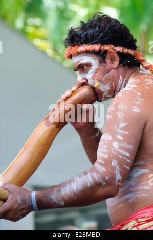 Indigenous Australian Musical Instrument - Didgeridoo 23