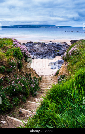 View down some steps from the cliff down to the beach at Godrevy in Cornwall - Stock Photo
