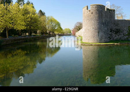 The moat and wall of the Bishop's Palace in the city of Wells, Somerset. - Stock Photo