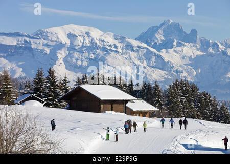 France, Haute Savoie, Praz de Lys with a view of the Massif du Mont Blanc and the Aiguilles de Chamonix which the - Stock Photo