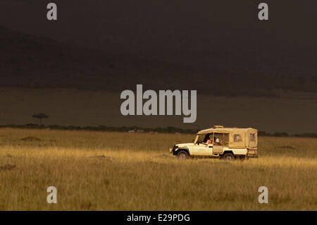 Kenya, Masai Mara, safari - Stock Photo