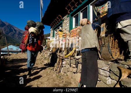 Nepal, Sagarmatha Zone, Khumbu Region, trek of the Everest Base Camp, arrival at the lodge of Phakding - Stock Photo