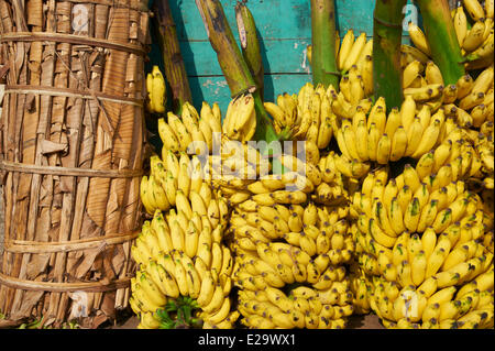 India, Kerala state, Trivandrum or Thiruvananthapuram, Kerala capital, fruit market - Stock Photo