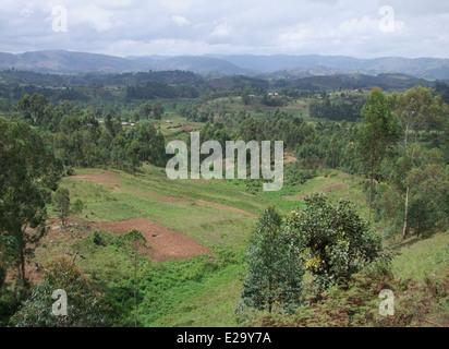 aerial view around the Virunga Mountains in Uganda (Africa) - Stock Photo